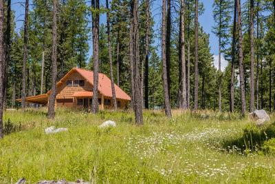 Bigfork Single Family Home Under Contract Taking Back-Up : 1003 Dancing Bear Trail