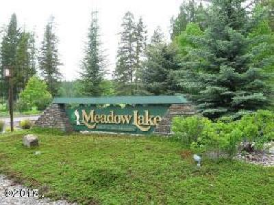 Flathead County Other For Sale: 103 Spyglass Hill Loop