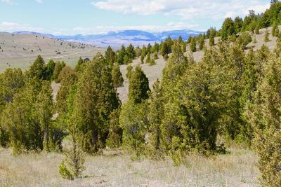 Butte Residential Lots & Land For Sale: 205 Haggin View Road