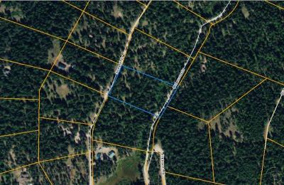 Seeley Lake MT Residential Lots & Land For Sale: $55,000