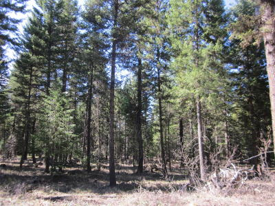 Lincoln County Residential Lots & Land For Sale: Lot 18 Swede Mountain Road