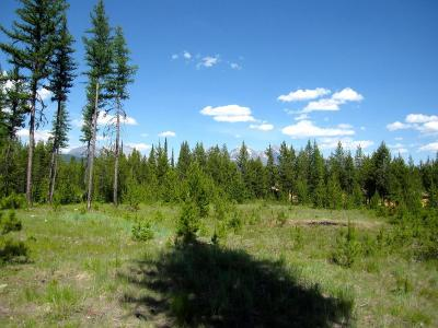 Polebridge, West Glacier Residential Lots & Land For Sale: N.H.N. Kintla Ranch Road