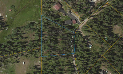 Missoula County Residential Lots & Land For Sale: 1025 Evergreen Drive