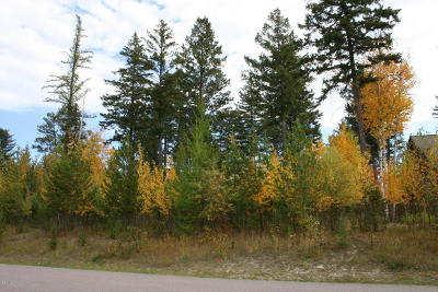 Flathead County Residential Lots & Land For Sale: 1006 Saint Andrews Drive