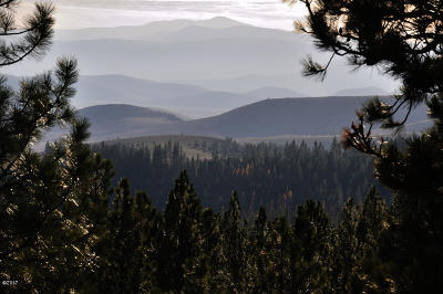 Flathead County Residential Lots & Land For Sale: Browns Meadow Road