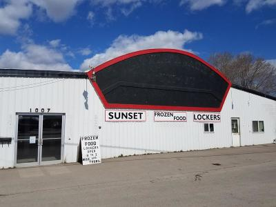 Flathead County Commercial For Sale: 1007 East Idaho Street