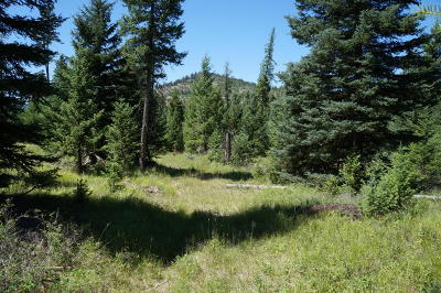 Kila Residential Lots & Land For Sale: 285 Forest Ridge Trail