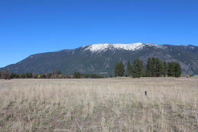 Columbia Falls Residential Lots & Land For Sale: 523 Badrock Drive