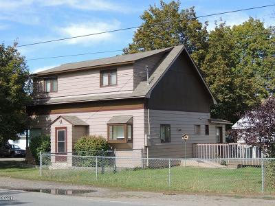 Plains Single Family Home For Sale: 406 South Willis Street