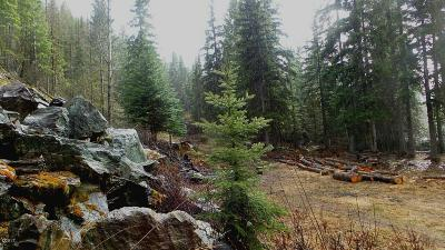 Lakeside Residential Lots & Land For Sale: 2080 Blacktail Road