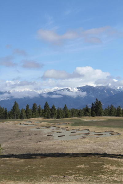 Lincoln County Residential Lots & Land For Sale: Wilderness Club Drive