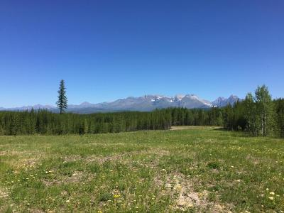 Polebridge, West Glacier Residential Lots & Land For Sale: 10975 North Fork Road