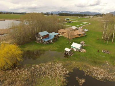 Columbia Falls, Hungry Horse, Martin City, Coram Single Family Home Under Contract Taking Back-Up : 225 Bison Hollow Road