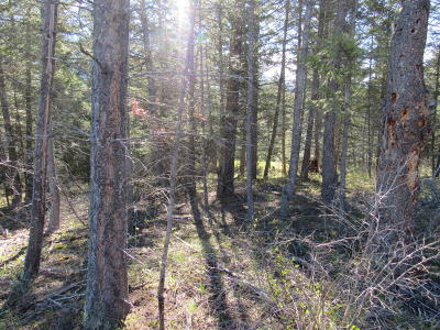Flathead County Residential Lots & Land Under Contract Taking Back-Up : 35 Mountain Timbers Court