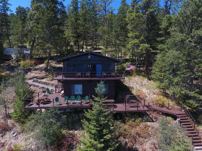 Lake County Single Family Home For Sale: 29486 Black Bear Trail