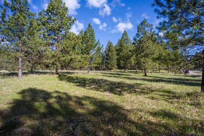 Bigfork Residential Lots & Land For Sale: 7945 Mt-35