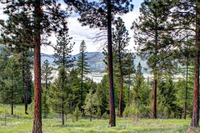 Flathead County Residential Lots & Land For Sale: 193 Torto Loop