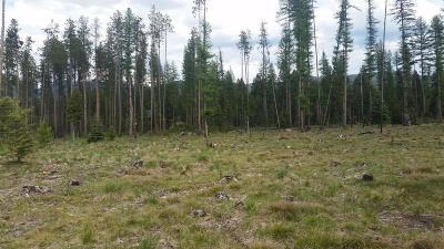 Missoula County Residential Lots & Land For Sale: 204 Cut Throat Drive