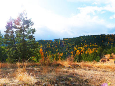 Kila Residential Lots & Land Under Contract with Bump Claus: Nhn Jackson Meadows Road