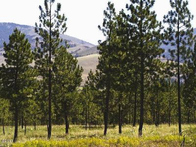 Sanders County Residential Lots & Land For Sale