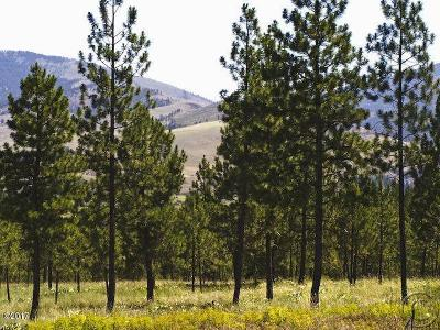 Plains MT Residential Lots & Land For Sale: $49,000