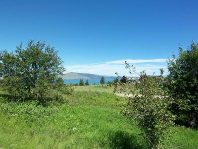 Polson MT Residential Lots & Land For Sale: $30,000