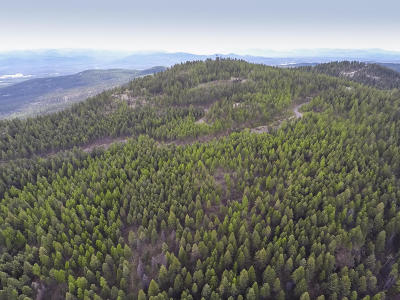 Whitefish Residential Lots & Land For Sale: 2475 Wolf Tail Pines Road