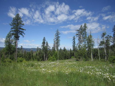 Bigfork Residential Lots & Land For Sale: Nhn Cougar Flats Road