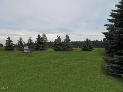 Kalispell MT Residential Lots & Land For Sale: $790,000