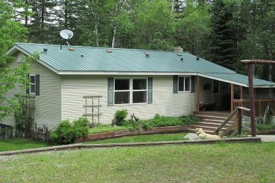 Columbia Falls, Hungry Horse, Martin City, Coram Single Family Home For Sale: 3995 North North Fork Road