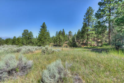 Ravalli County Residential Lots & Land For Sale: Lot 66 Prodigal Trail