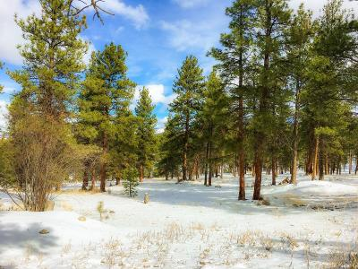 Ravalli County Residential Lots & Land For Sale: Lot 52 Stock Farm Road