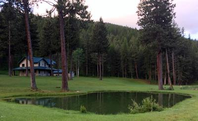 Missoula Single Family Home For Sale: 7399 Evaro Road