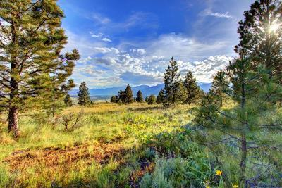 Missoula County Residential Lots & Land For Sale: Lot 8b-1 Red Quill Ranch