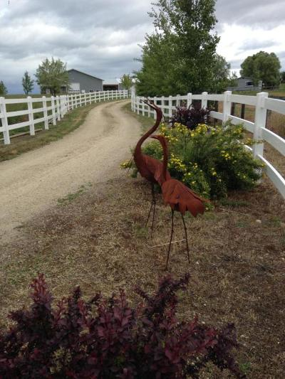 Corvallis Single Family Home For Sale: 1307/1317 Dodson Lane