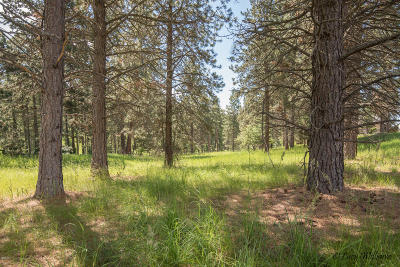 Bigfork Residential Lots & Land For Sale: 230 Stage Ridge Road