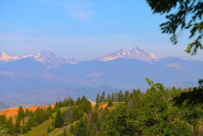 Butte Residential Lots & Land For Sale: East Ridge