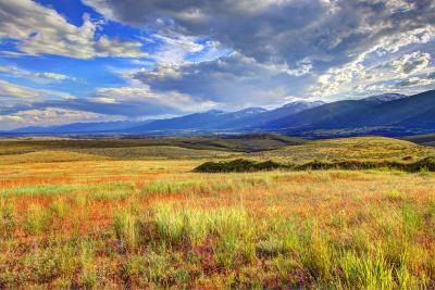 Missoula County Residential Lots & Land For Sale: Tract 28 Red Quill Ranch