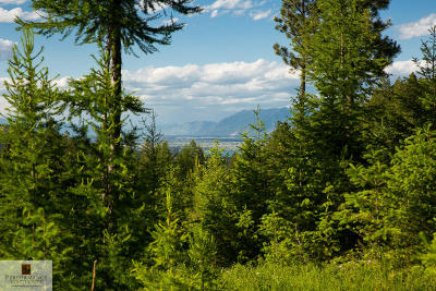 Lakeside Residential Lots & Land For Sale: 410 Blacktail Heights Road