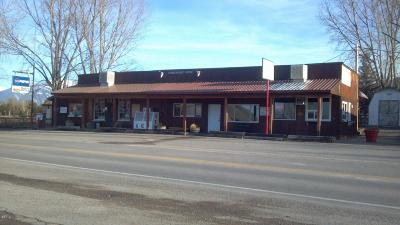 Lake County Commercial For Sale: 64620 Mt Hwy 212