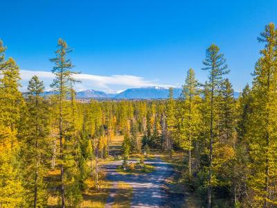 Whitefish Residential Lots & Land For Sale: 10 Harlequin Court