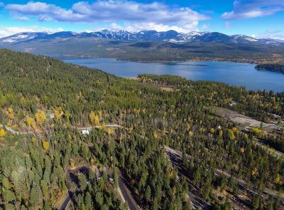 Whitefish Residential Lots & Land For Sale: 46 Harlequin Court