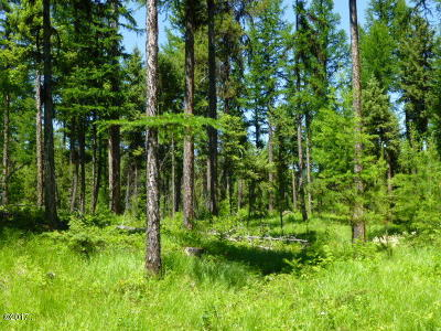 Whitefish Residential Lots & Land For Sale: 255 Chinook Lake Road