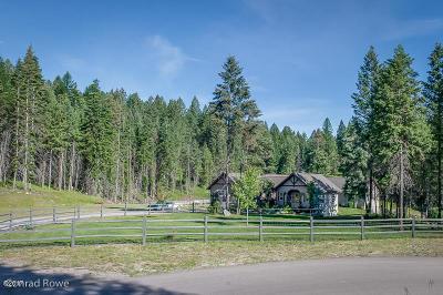 Bigfork Single Family Home For Sale: 308 Belterra Lane