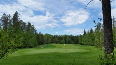 Columbia Falls Residential Lots & Land For Sale: 104 Oakmont Loop