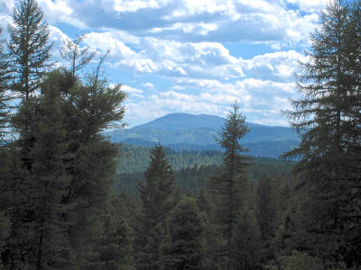 Kalispell Residential Lots & Land For Sale: 1685 Kienas Road