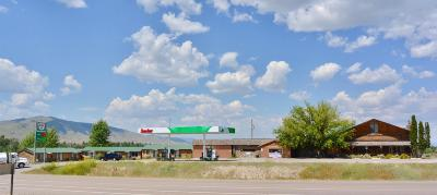 Lake County Commercial For Sale: 77565 Us Hwy 93 North