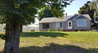 Lake County Single Family Home For Sale: 36154 South Southshore Lane