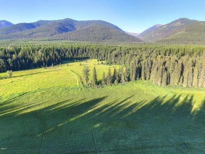 Bigfork MT Residential Lots & Land For Sale: $695,000