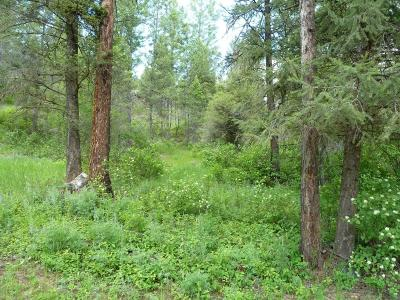 Flathead County Residential Lots & Land For Sale: 325 South Eighty Drive